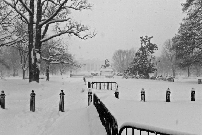 white-house-2010